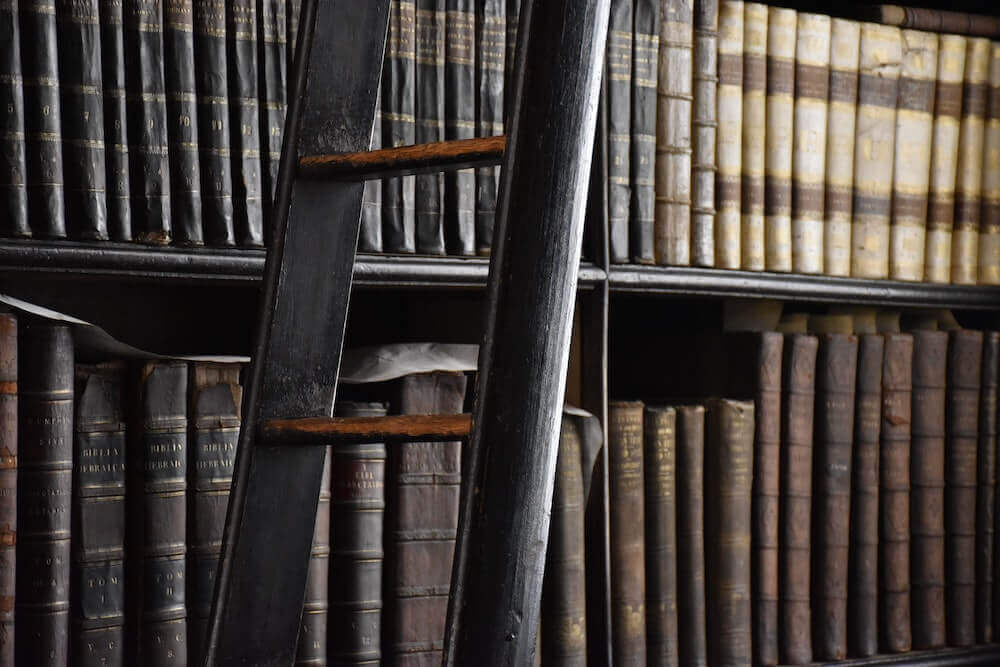 library shelves with books and ladder in front